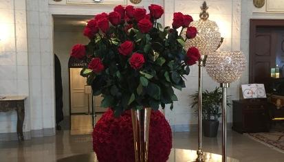Fresh roses inD.C.