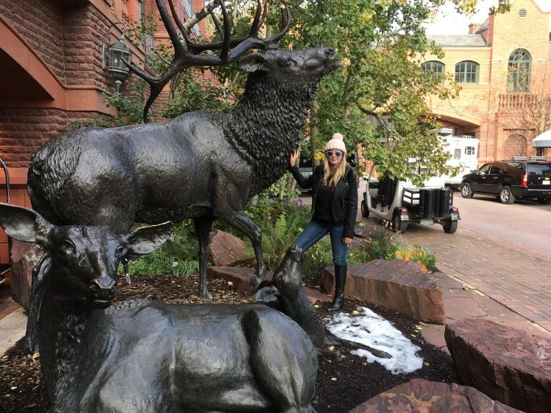 Elk at The Ritz in AspenHighlands
